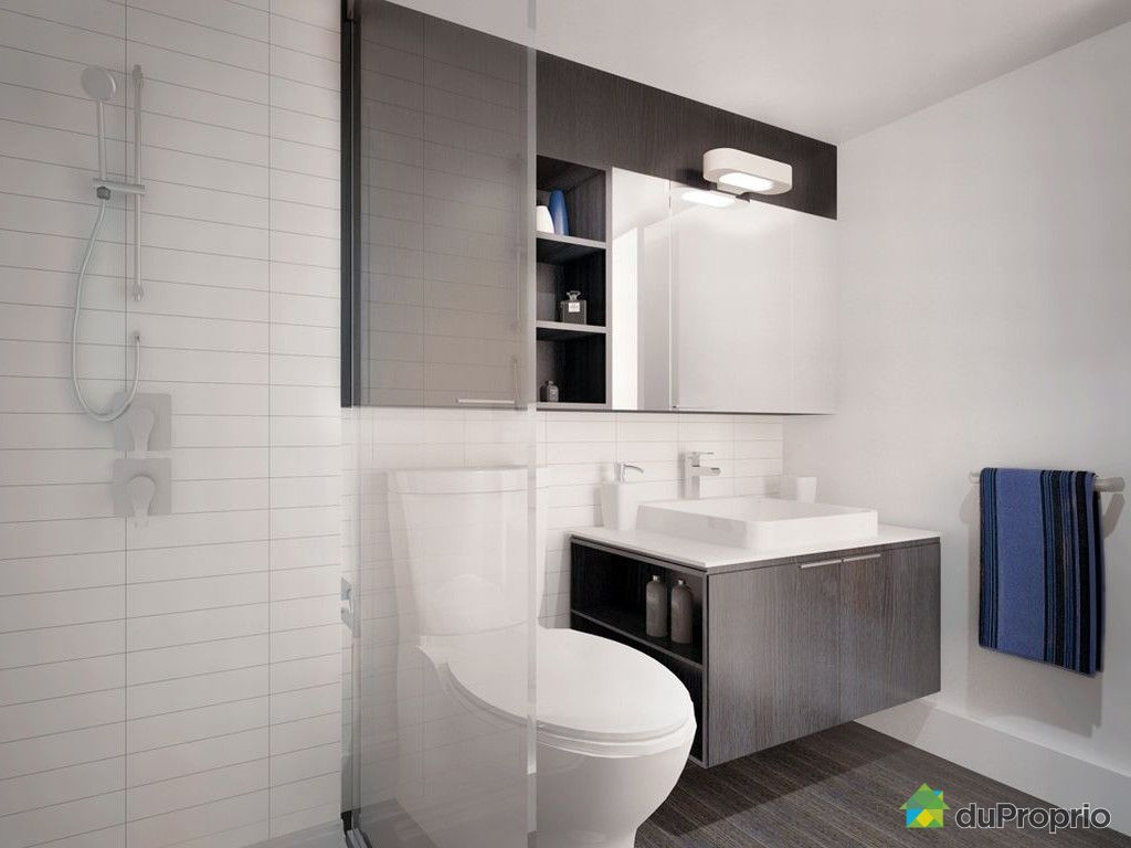 petite salle de bain avec wc. Black Bedroom Furniture Sets. Home Design Ideas