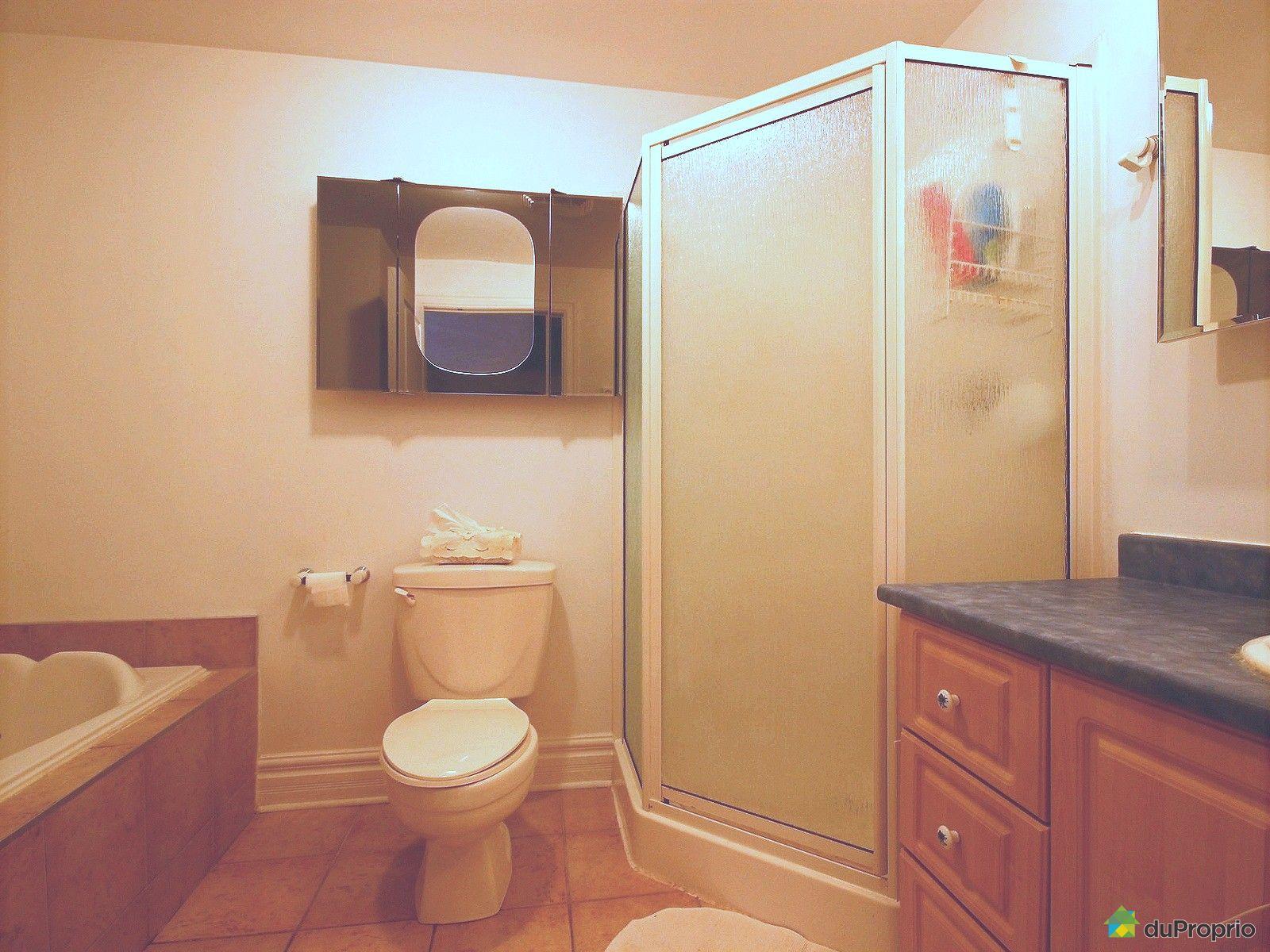 condo vendre montr al 3297 rue de cadillac immobilier qu bec duproprio 696822. Black Bedroom Furniture Sets. Home Design Ideas