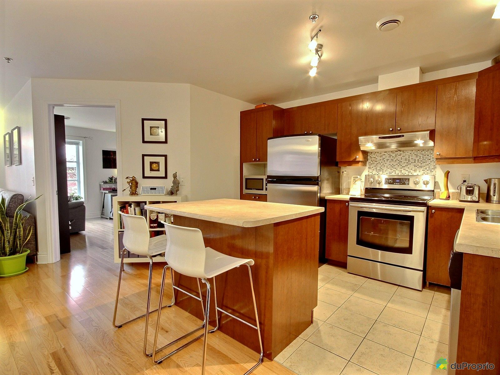 condo vendre montr al 209 100 rue rh aume immobilier qu bec duproprio 666859. Black Bedroom Furniture Sets. Home Design Ideas