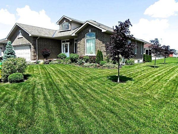 house sold in belleville comfree 503842
