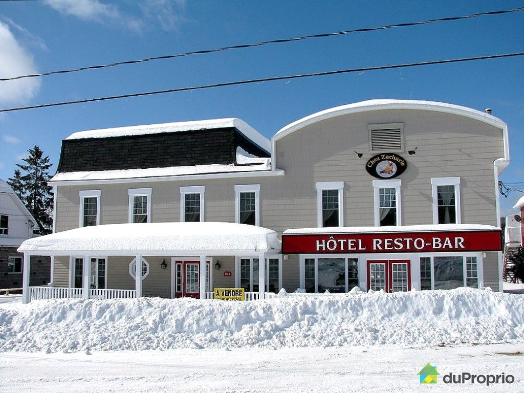 Hotel / Motel for sale in Rivière-à-Pierre, 101 rue Commerciale ...