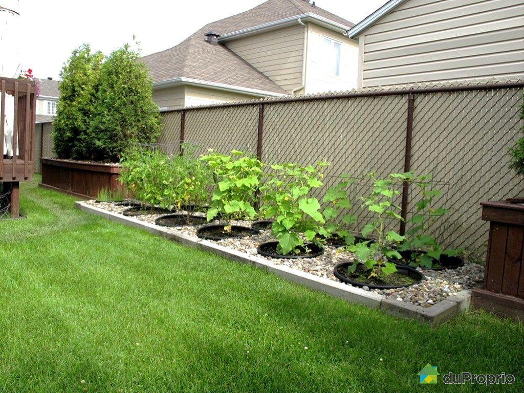 Exemple de jardin de maison for Jardin immobilier
