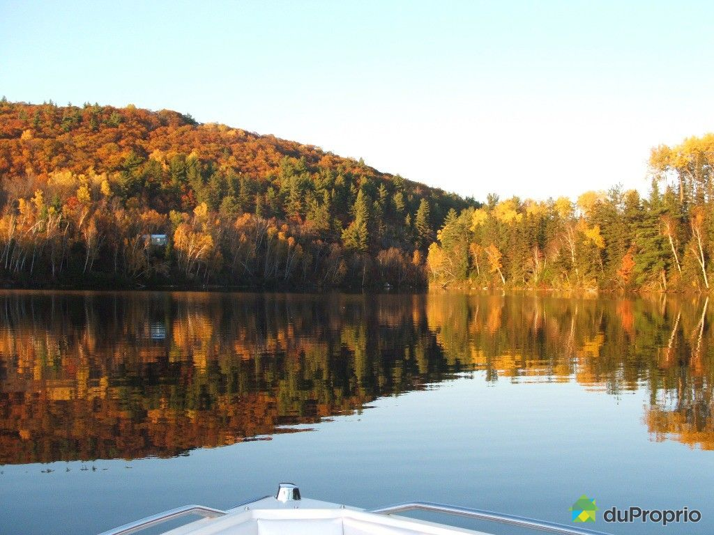 Waterfront Property For Sale Otter Lake Quebec