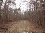 Residential Lot in Grand Bend, Essex / Windsor / Kent / Lambton