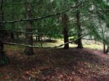 Residential Lot in Salt Spring Island, Vancouver Island / Gulf Islands