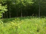 Residential Lot in South Bruce Peninsula, Dufferin / Grey Bruce / Well. North / Huron