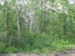 Residential Lot in Ste. Anne, East Manitoba - South of #1