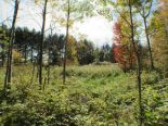 Residential Lot in Williamstown, Ottawa and Surrounding Area