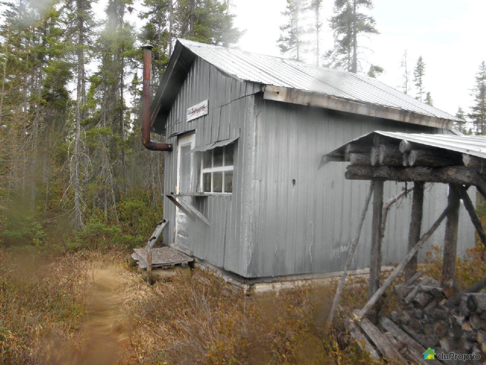 Terre à bois à vendre StMarcelDeLIslet, chemin de la