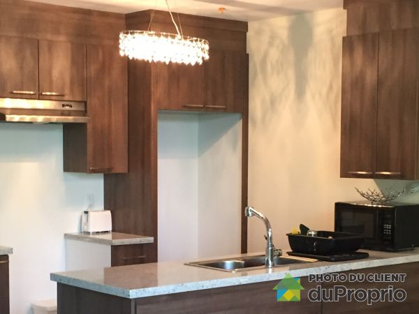 Kitchen - 17135 Boulevard Gouin Ouest, Pierrefonds / Roxboro for rent