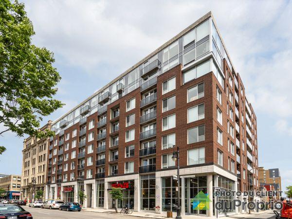 913-1255, rue Bullion - Appartements B&C - PAR MONDEV, Le Plateau-Mont-Royal à louer
