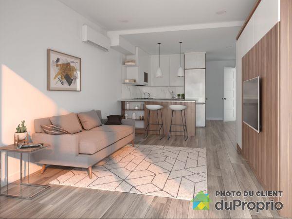 1150 rue Marie-Anne, Le Plateau-Mont-Royal for rent