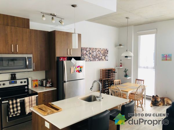 B102-250, Rue Gary-Carter, Villeray / St-Michel / Parc-Extension à louer