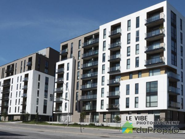702-88 rue Dollard-des Ormeaux, Gatineau (Hull) for rent
