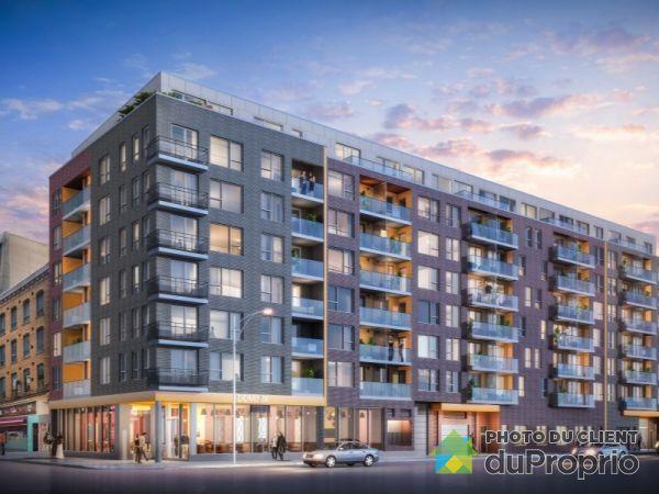 212-1255 rue Saint-Dominique - DOMINIK - PAR MONDEV, Ville-Marie (Centre-Ville et Vieux Mtl) for rent