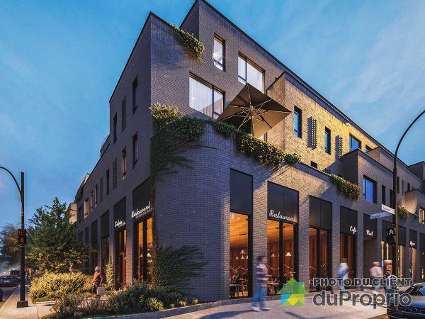 Studio-495 avenue Beaumont, Villeray / St-Michel / Parc-Extension for rent