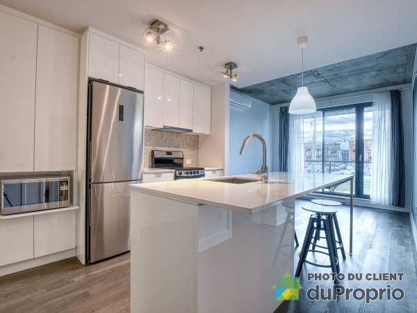 241-3100 rue Rachel Est, Rosemont / La Petite Patrie for rent