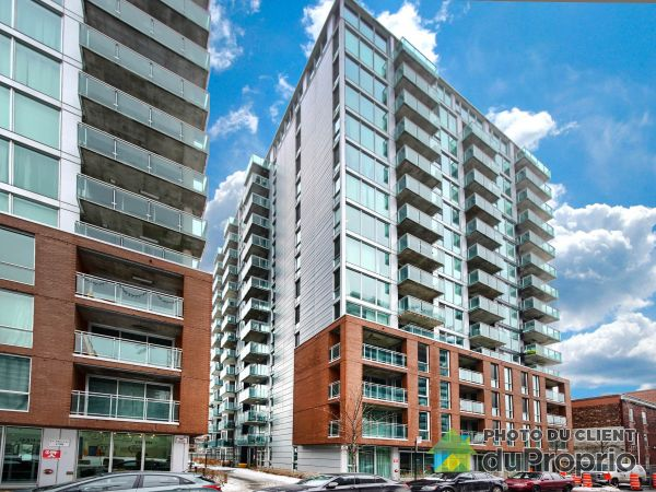 620-190 rue Murray, Griffintown for rent