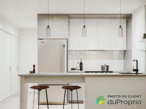 219-1250 avenue Thérèse-Lavoie-Roux - Milhaus - PAR MONDEV, Outremont for rent