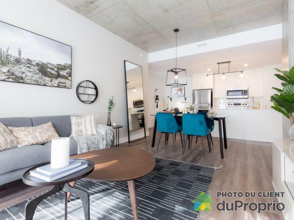 1295 rue des Carrières - Central Rosemont, Rosemont / La Petite Patrie for rent