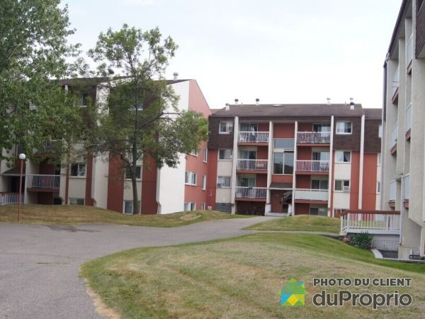 Apartment - 7-781 Boulevard Wilfrid-Hamel, Vanier for rent