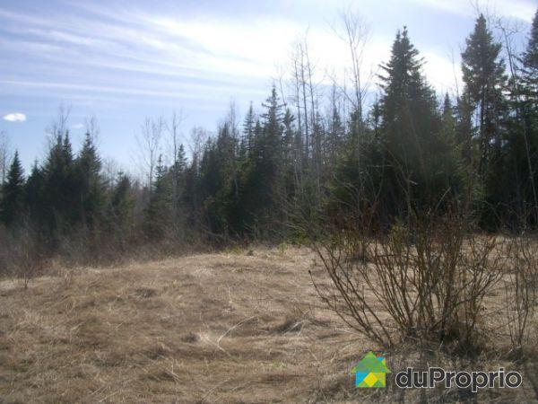 Lot - 2 rang Sud, Gaspé for sale