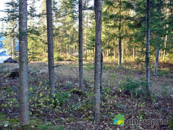Lot - 72 chemin Dubois, Lac-Saguay for sale