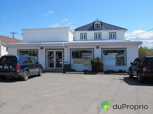 10 avenue Gaspé est, St-Jean-Port-Joli for sale