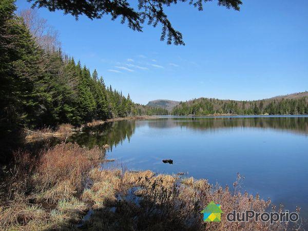 Accès au lac - 7, chemin de l'Épinette, Lac-Aux-Sables à vendre