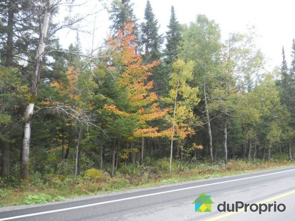 Lot - 3019 route Chesham, Val-Racine for sale