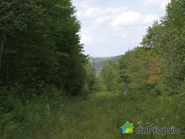 Lot -  204 Route Ouest, St-Adalbert for sale