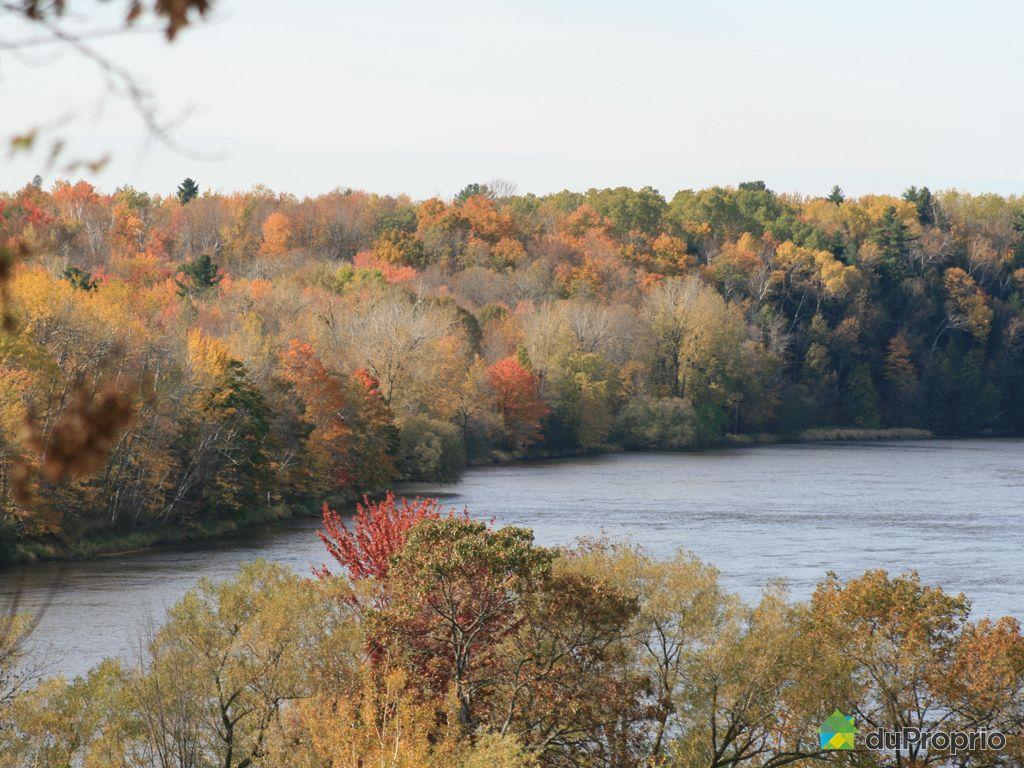Vue panoramique - 666, rang Saint-Michel, Drummondville (St-Joachim-De-Courval) à vendre