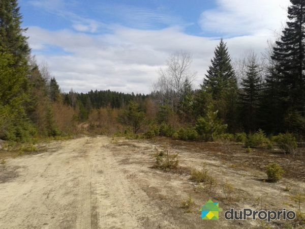 Overall View -  route 117, Rivière-Rouge for sale