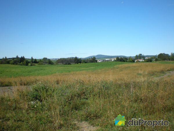 Terrain - Développement domiciliaire du Ruisseau-Raphaël, St-Valérien à vendre