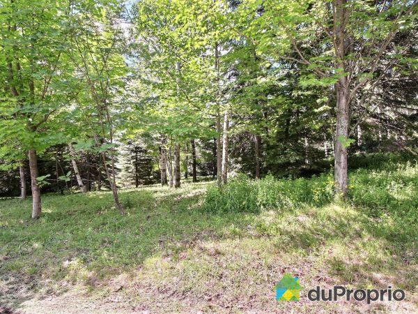 Lot - 2382 avenue Royale, St-Ferréol-les-Neiges for sale