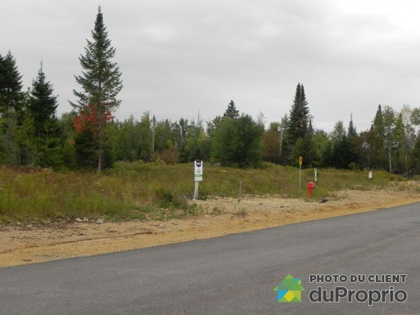 Lot - Avenue du Pré - Domaine Louis-Jobin, St-Raymond for sale