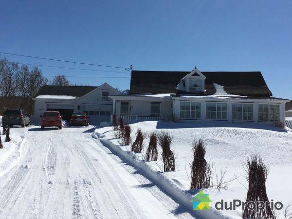 Winter Front - 79 1re Avenue Est, Ste-Anne-Des-Monts for sale