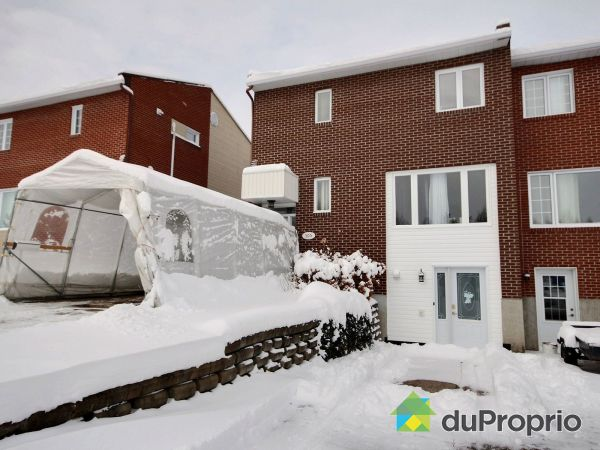 Winter Front - 305 avenue de la Friche, Dolbeau-Mistassini for sale