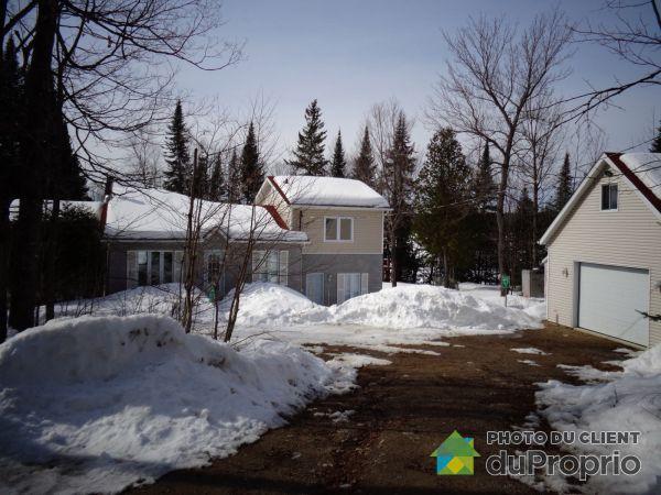 Winter Front - 1040 chemin des Cormorans, Nominingue for sale