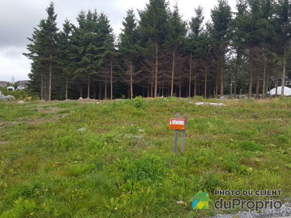 Lot - 390 rue du Rocher, Sts-Anges for sale
