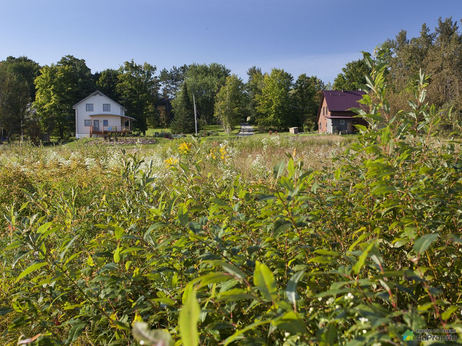 rue Swanson, Waterville for sale