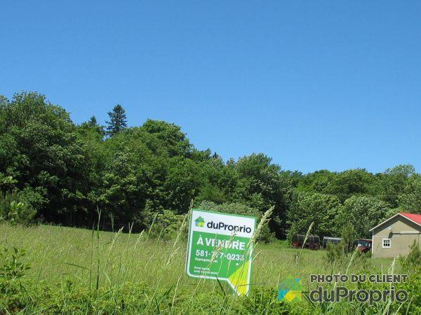 Terrain - , chemin du Rivage, Isle-Aux-Grues à vendre