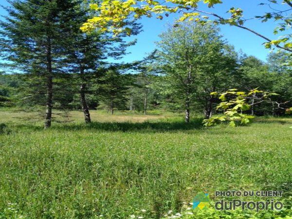 Woods - 00 chemin des Peupliers, La Conception for sale