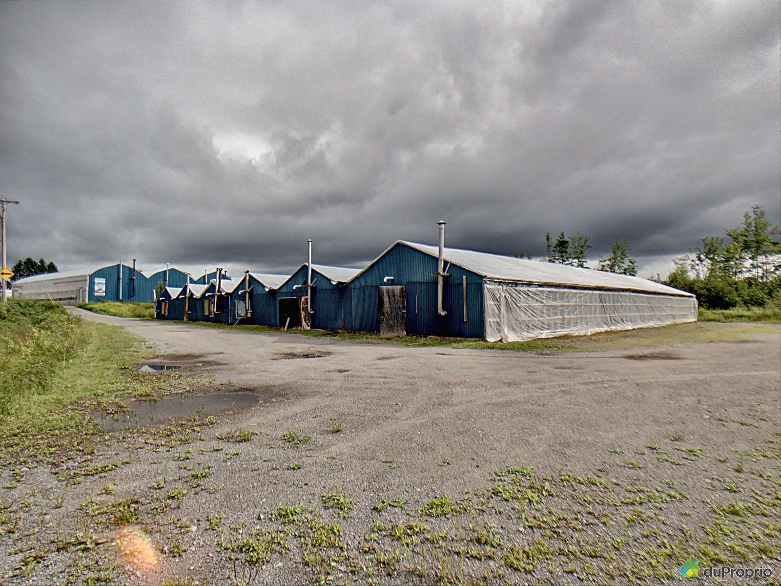 102 rang Saint-Louis, St-Fulgence for sale