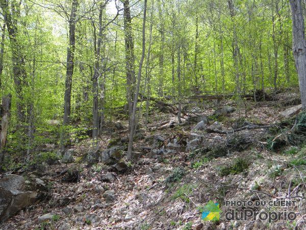 1159 chemin de Sainte-Anne-des-Lacs, Ste-Anne-Des-Lacs for sale