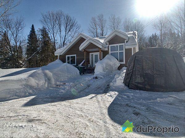 Winter Front - 1040 côte Saint-Gabriel Ouest, St-Sauveur for sale