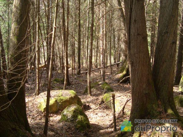 Woods - Lot 139 rue des Gémeaux, Val-David for sale