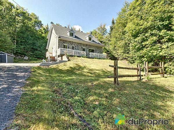 Front Yard - 185 chemin du Lac-Manitou, Ste-Agathe-Des-Monts for sale