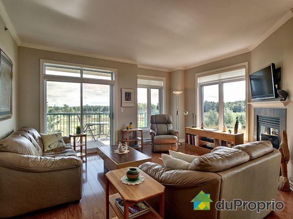 Living Room - 205-1160 chemin Aylmer, Gatineau (Aylmer) for sale