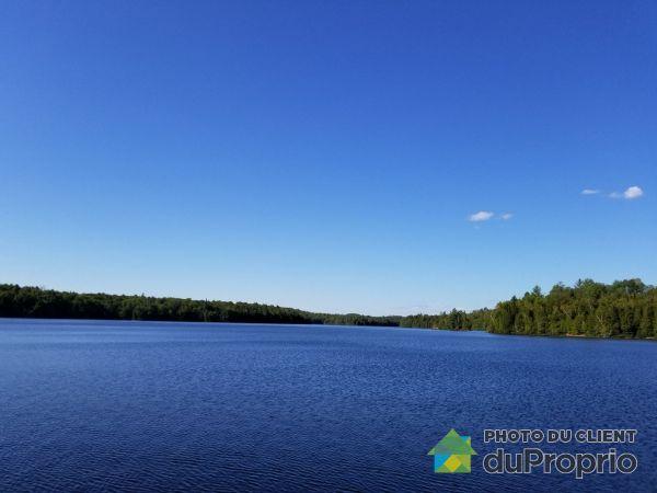 Lac - 15, chemin Heneault, La Minerve à vendre